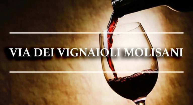 vino molise